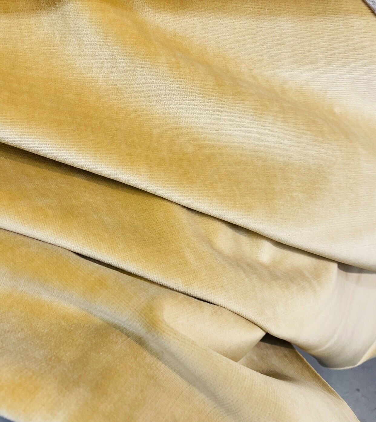 NEW! Prince Burgess- Designer Cotton Soft Velvet Upholstery Fabric - Camel Yellow - By The Yard