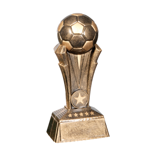 Soccer Champion Award