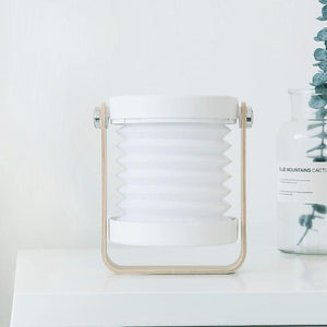 Foldable Lamp