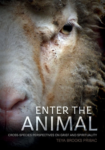 Cover of Enter the Animal featuring the face of Henry, the sheep.