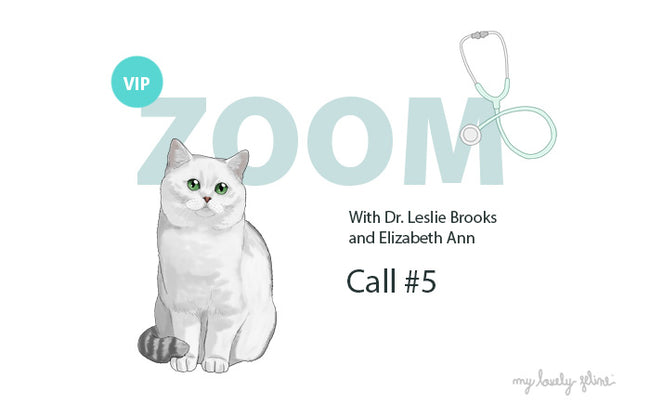 Zoom Recap: Are We Over-Vaccinating Cats?—Call #5
