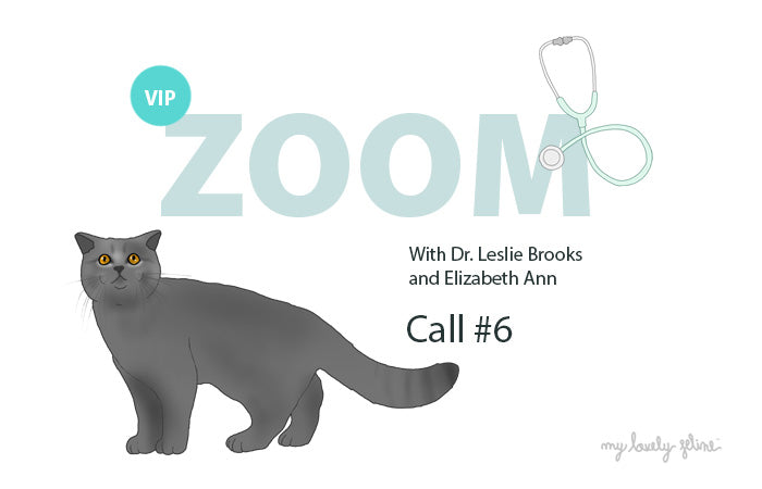 Zoom Recap: Dental Care & Litter Box Issues—Call #6