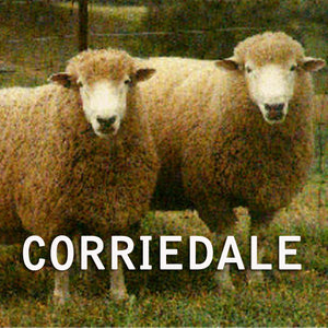 GROUP SALE CORRIEDALE