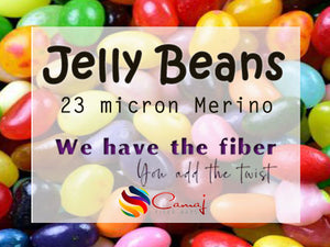 GROUP SALE -  23 micron Merino - ZEN FIBER JELLY BEANS  - 1.1 pounds