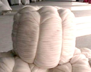 Blue Faced Leicester UNDYED BUMP combed top - 22.2 pounds
