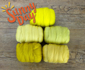GROUP SALE - SUNNY DAY - Fiber jelly beans 23 micron Merino -  1.1 pounds