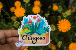 Chingona Box 6 Pack Sticker SALE!