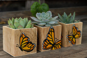 Set of 3 Monarch Butterfly Planters