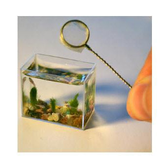 The World Smallest Gift Ideas