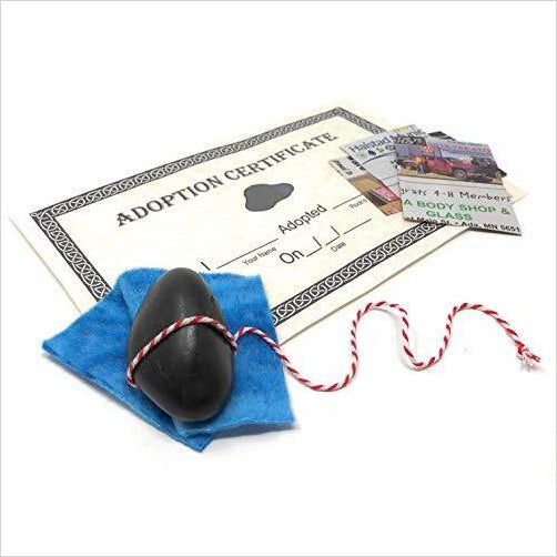 Rock Pet Kit with Adoption Certificate-Guild Product - www.Gifteee.com - Cool Gifts \ Unique Gifts - The Best Gifts for Men, Women and Kids of All Ages