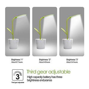 Plant Desk Lamp - Find unique decor gifts for the office and workplace, get cool gadgets for your office desk and cubicle at Gifteee Cool gifts, Unique decor Gifts for the office and workplace