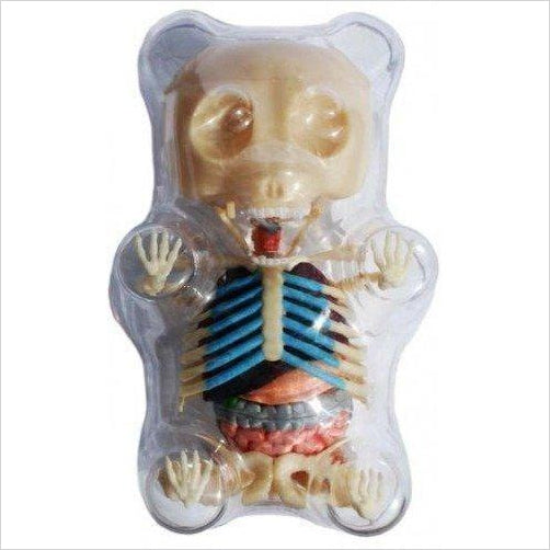 Gummi Bear Skeleton Anatomy Model Kit-Toy - www.Gifteee.com - Cool Gifts \ Unique Gifts - The Best Gifts for Men, Women and Kids of All Ages