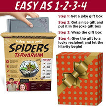 Load image into Gallery viewer, Prank Gift Box Hatch Your Own Spider Terrarium - Find funny gift ideas, the best gag gifts, gifts for pranksters that will make everybody laugh out loud at Gifteee Cool gifts, Funny gag Gifts for adults and kids