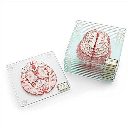 Brain Specimen Coasters-Kitchen - www.Gifteee.com - Cool Gifts \ Unique Gifts - The Best Gifts for Men, Women and Kids of All Ages