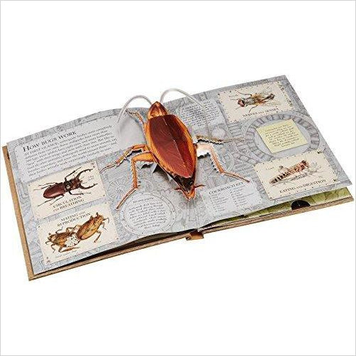 Bugs: A Stunning Pop-up Look at Insects, Spiders, and Other Creepy-Crawlies - Gifteee. Find cool & unique gifts for men, women and kids