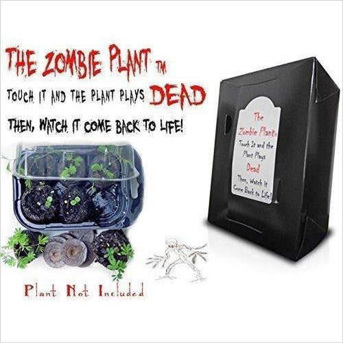Zombie Plant Grow Kit - Find the most unique and unusual gifts. Weird gifts ideas that you never saw before. unusual gadgets, unique products that simply very odd at Gifteee Odd gifts, Unusual Gift ideas