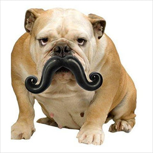 Mustache Chew Dog Toy-Pet Products - www.Gifteee.com - Cool Gifts \ Unique Gifts - The Best Gifts for Men, Women and Kids of All Ages
