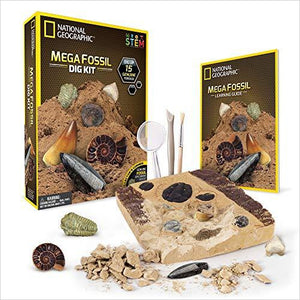 Mega Fossil Mine – Dig Up 15 Real Fossils-Toy - www.Gifteee.com - Cool Gifts \ Unique Gifts - The Best Gifts for Men, Women and Kids of All Ages