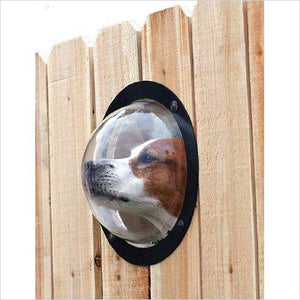 Fence Window for Pets-Pet Products - www.Gifteee.com - Cool Gifts \ Unique Gifts - The Best Gifts for Men, Women and Kids of All Ages