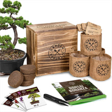 Bonsai Tree Seed Starter Kit-Lawn & Patio - www.Gifteee.com - Cool Gifts \ Unique Gifts - The Best Gifts for Men, Women and Kids of All Ages