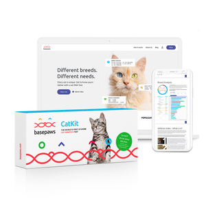 Cat DNA Test - The Whole Genome Sequencing