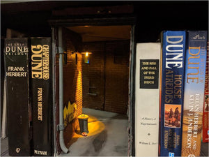 Dark Alley Book Nook