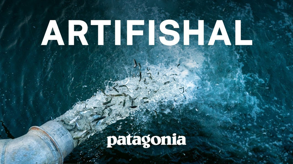 Artifishal Screening 10/22/19