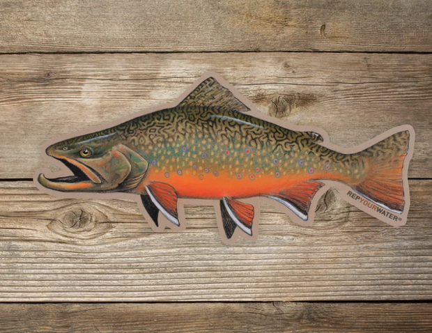 Rep Your Water Fall Brookie Sticker