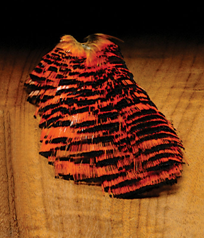 Golden Pheasant Complete Natural Tippets