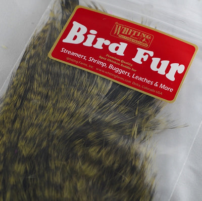 Whiting Bird Fur