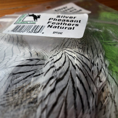 Silver Pheasant Body Feathers