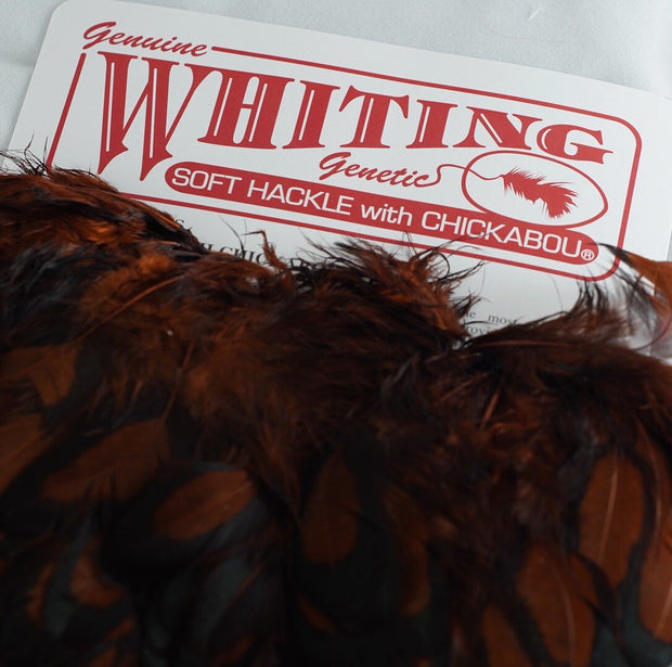 Whiting Rooster Soft Hackle with Chickabou