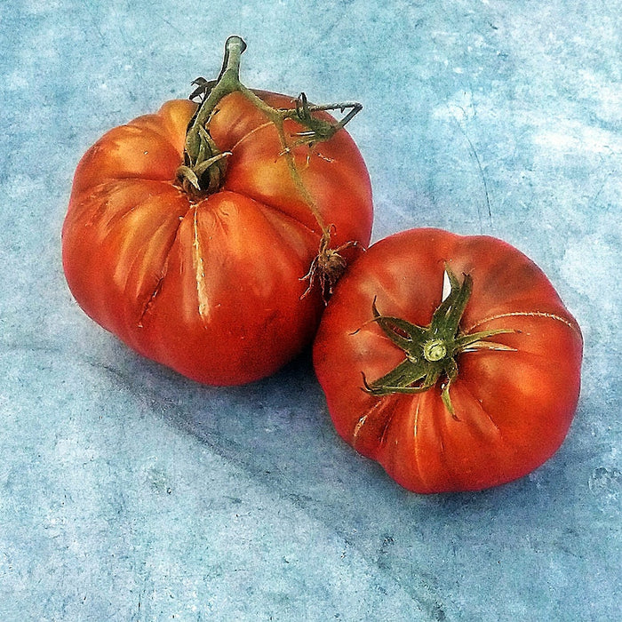 Chico's Big Black Paste Heirloom Tomato 30+ Seeds Grown To Organic Standards Open Pollinated Garden Seed