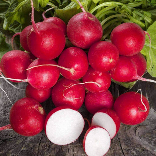 Cherry Belle Heirloom Radish Seeds