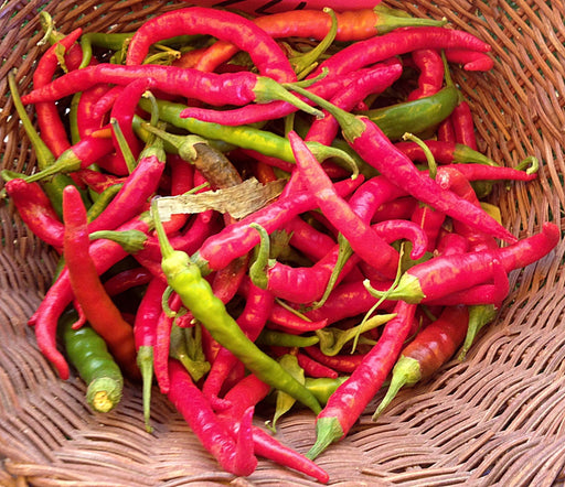 Joe's Long Cayenne Chili Hot Pepper Seeds Heirloom 30+ Seeds