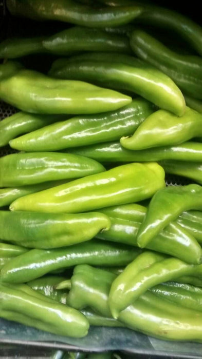 Numex Joe E Parker Hot Pepper Seeds Non-GMO