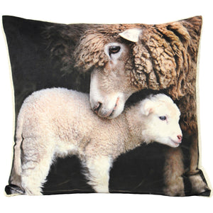 Sherpa Lamb Cushion