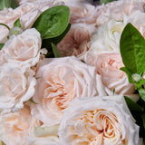 Detail of white O'Hara roses and white majolica roses with green accents.