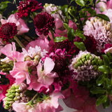 Detail of raspberry scabiosa with fragrant pink hyacinth and variegated pink sweet peas.