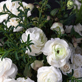 Detail of blend of seasonal white florals.