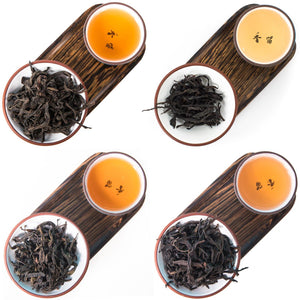 Dark Oolong Tea Discovery Collection