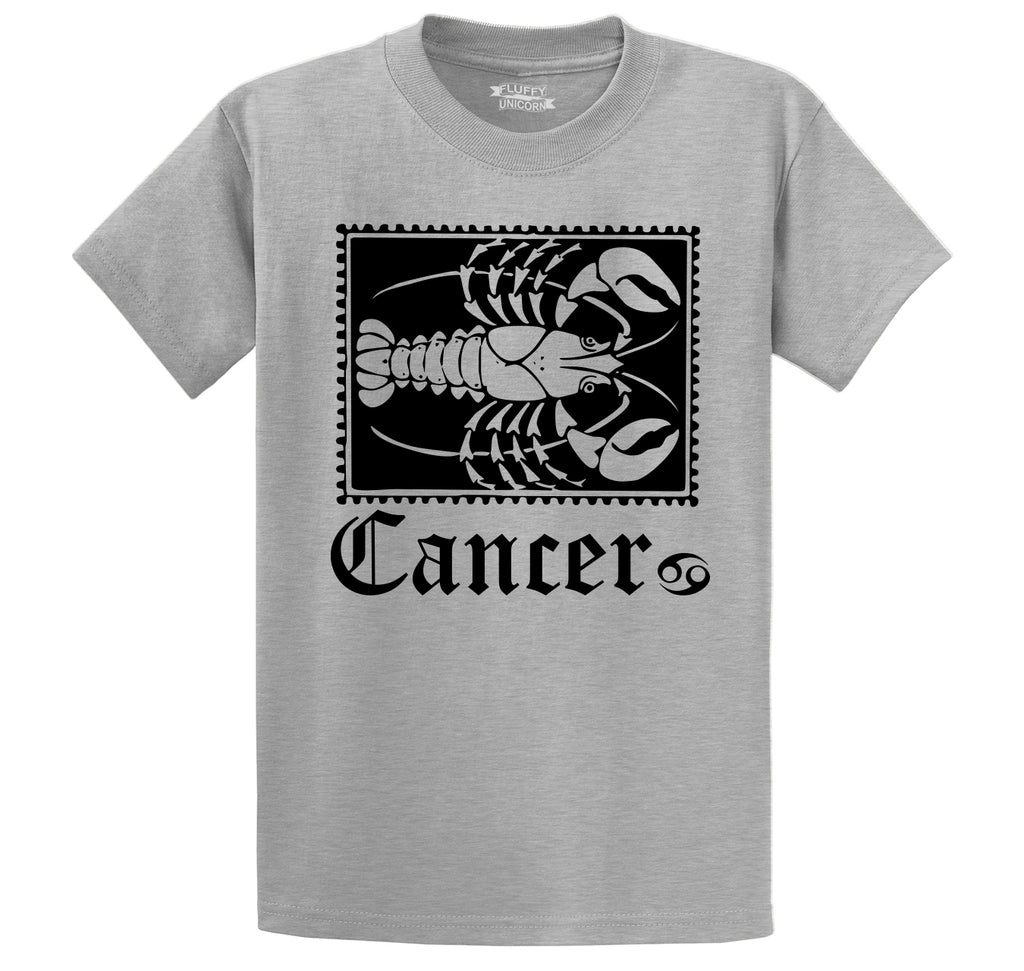 Horoscope Cancer Tee Men's Heavyweight Cotton Tee Shirt