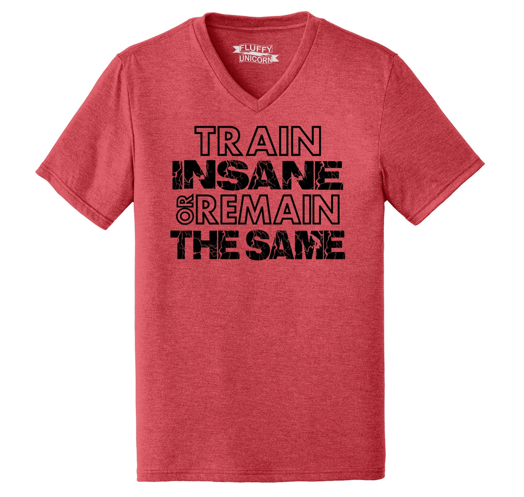 Train Insane Or Remain The Same Motivational Workout Shirt Mens Tri-Blend V-Neck Tee Shirt