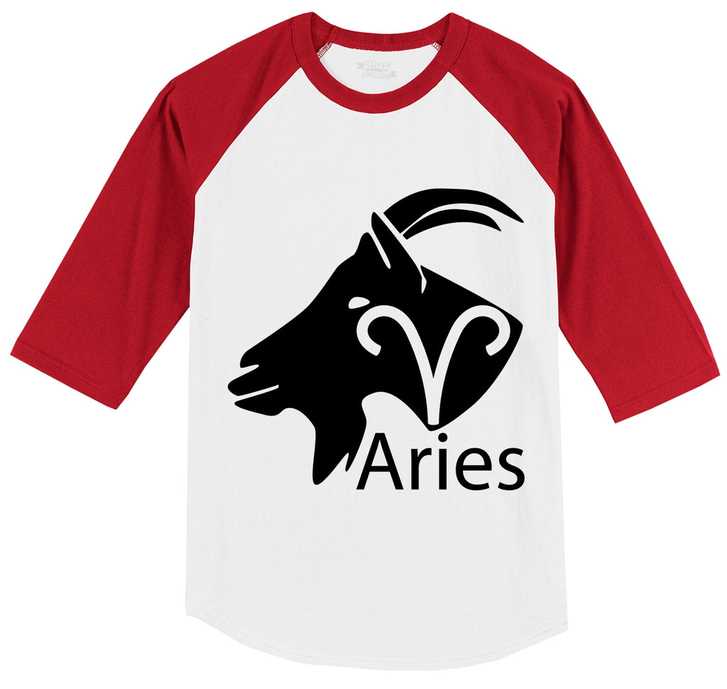 Aries Horoscope Shirt, March April Birthday Gift Tee Mens 3/4 Sleeve Raglan Jersey