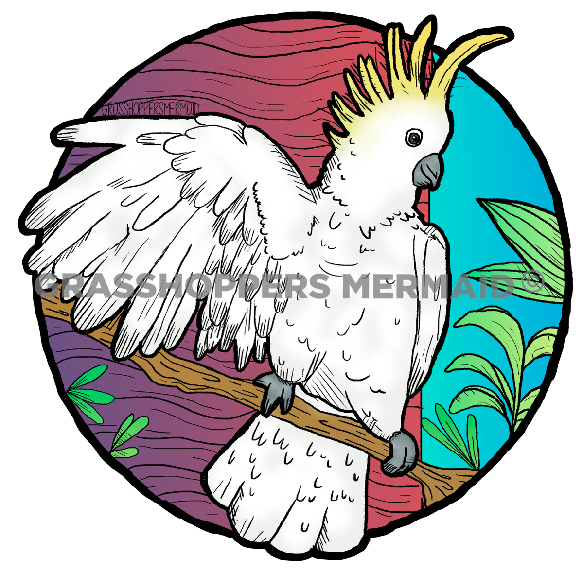 Cockatoo (#D25)