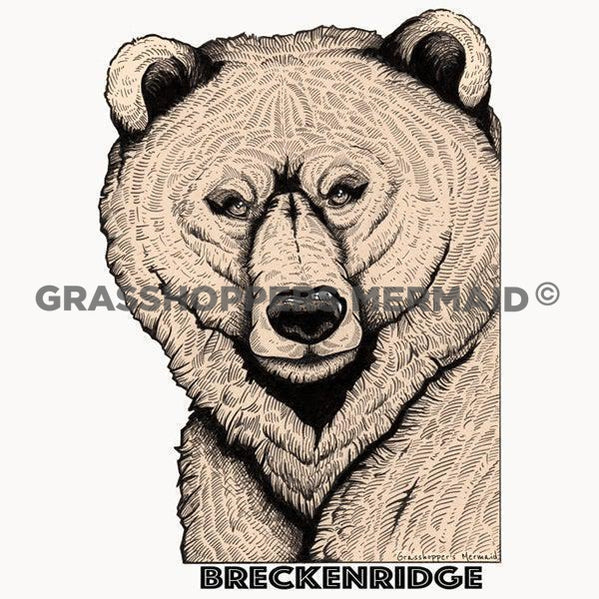 breckenridge colorado bear sticker