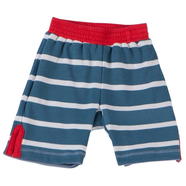 Blue Stripes Reversible Shorts