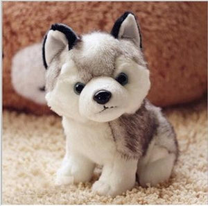Husky Dog Plush Toy - Corg Co.