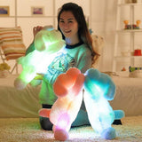 Adorable Light Up Plush Dog - Corg Co.