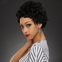 Fashion Short Fluffy Curly Black Synthetic Wig